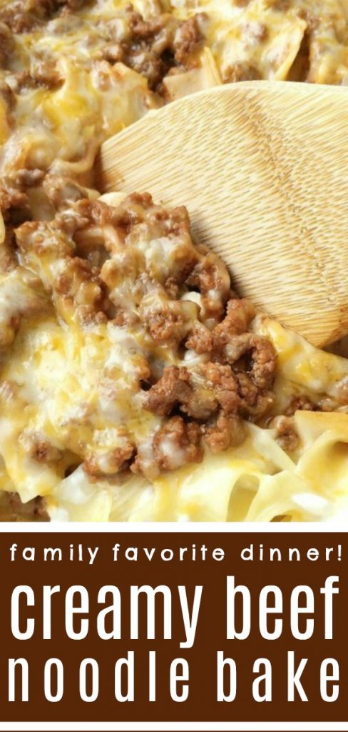 Creamy Beef Noodle Bake | Dinner Recipe | Ground Beef Recipes | Tender egg noodles, melty cheese, and a creamy tomato ground beef mixture make for one amazing, and family-friendly dinner! The entire family will love this simple and easy creamy beef noodle bake. It's a family favorite that can be on the dinner table in 30 minutes. #dinner #groundbeef #casserole #easydinnerrecipes #easy