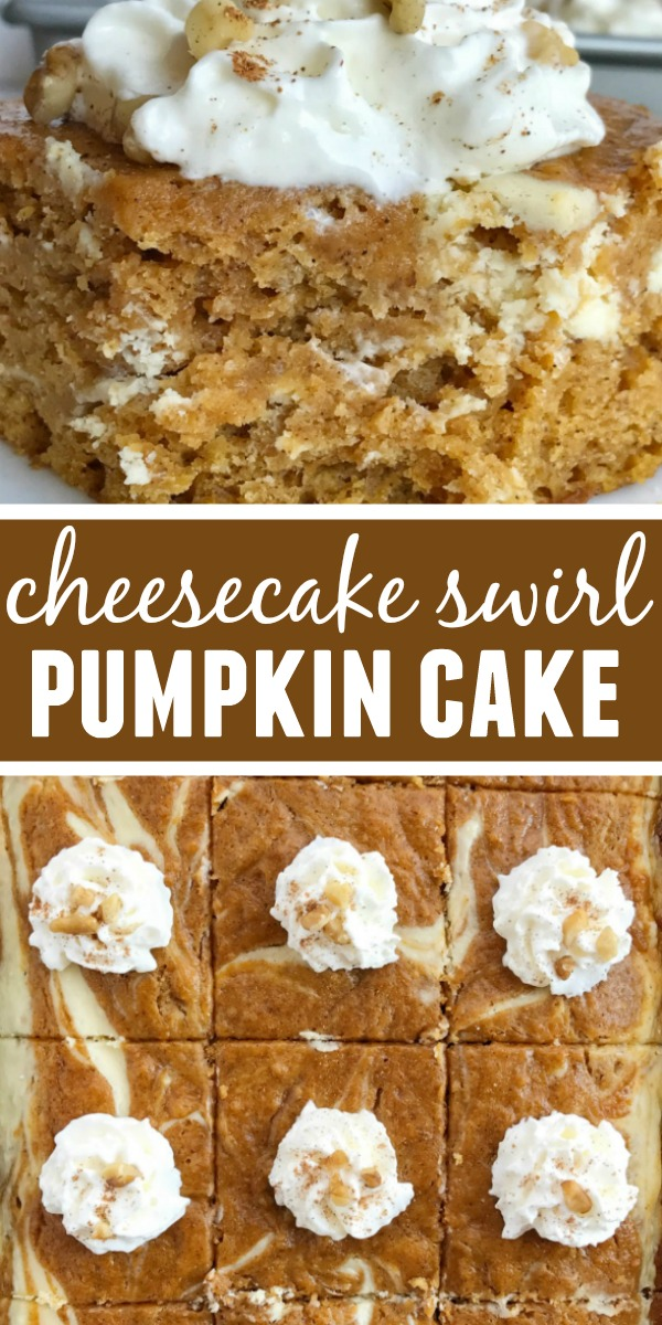 Cheesecake Pumpkin Cake | Pumpkin Cake | Pumpkin Cheesecake | Cheesecake pumpkin cake is a moist and flavorful pumpkin cake loaded with warm pumpkin spices and has a sweet cheesecake swirl. Garnish with whipped cream and chopped pecans for a delicious pumpkin dessert. #pumpkin #pumpkinrecipes #pumpkindesserts #pumpkinspice #easydessert #dessertrecipe #recipeoftheday #cake #cheesecake
