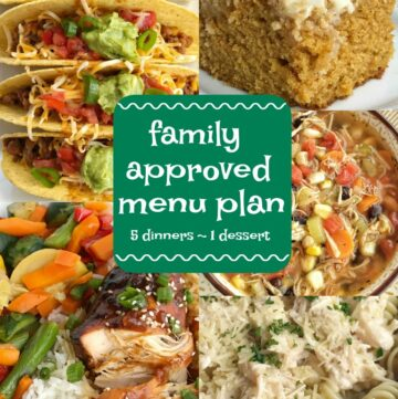 Family Approved Menu Plan