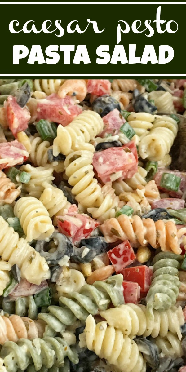 Caesar Pesto Pasta Salad | Pasta Salad Recipe | Salads | Side Dish | Caesar pesto pasta salad will be a hit at your next bbq, picnic, or dinner! Tender spiral pasta covered in a creamy Caesar pesto dressing, chopped tomatoes, olives, parmesan cheese, and pine nuts. So simple and easy to make and crazy delicious. #pastasalad #sidedish #saladrecipes #pastasaladrecipes